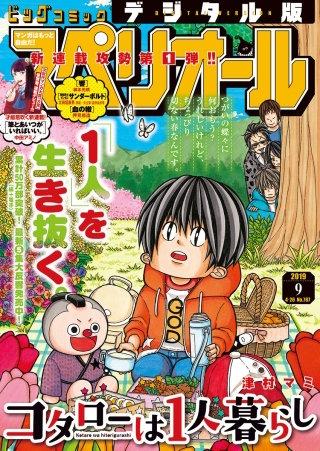 ビッグコミックスペリオール 2019年9号