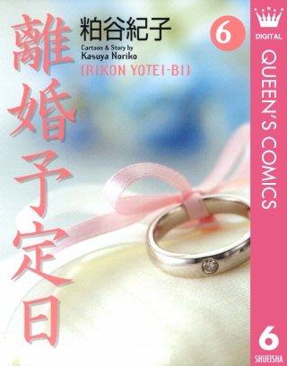 離婚予定日(6)