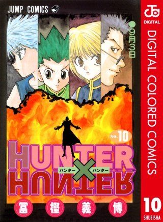 HUNTER×HUNTER カラー版(10)