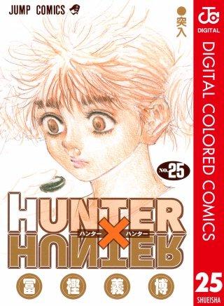HUNTER×HUNTER カラー版(25)