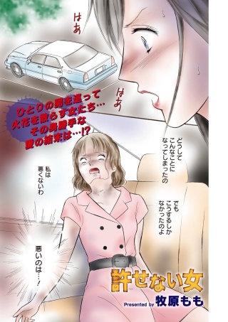 本当にあった主婦の黒い話 vol.8~許せない女~
