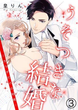 うそつきな結婚~カラダだけの初夜~(3)