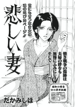 本当にあった主婦の黒い話vol.4~悲しい妻~