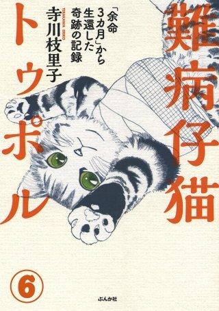 難病仔猫トゥポル「余命3カ月」から生還した奇跡の記録(分冊版)(6)