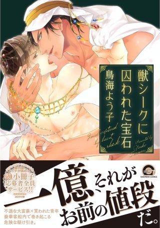 獣シークに囚われた宝石【電子限定かきおろし漫画付】(1)