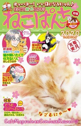 ねこぱんち 猫と桜号