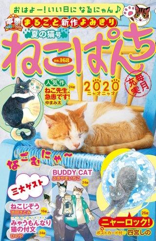 ねこぱんち 夏の猫号