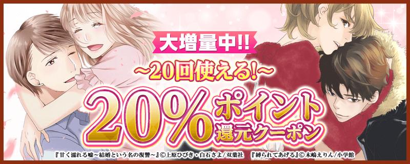 12/2~20%×10回クーポン配布決定!!