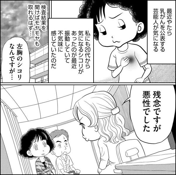 乳がんでもなんとかなるさ~独女マンガ家闘病記~