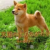 天国の犬ものがたり~ラストレター~