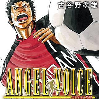 ANGEL VOICE