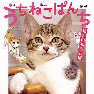 うちねこぱんち 猫との暮らし編