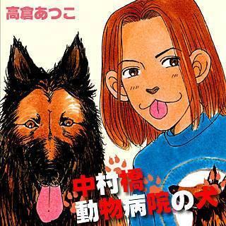 中村橋動物病院の犬